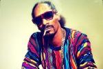 SOTO_Quote_Snoop-Dogg-Lion